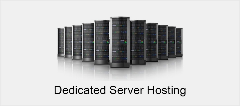 Dedicated Server Hosting: Most Reliable Option for Your Business